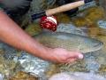 fishing_scene_8